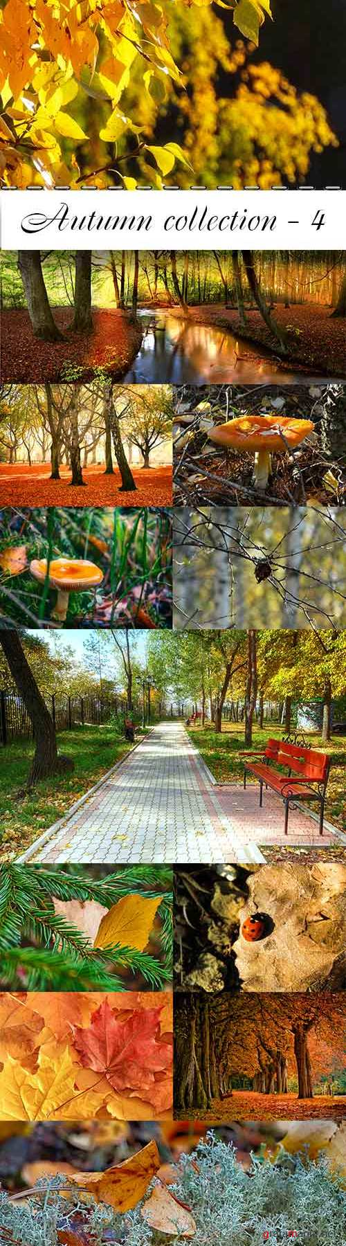Autumn collection raster graphics - 4
