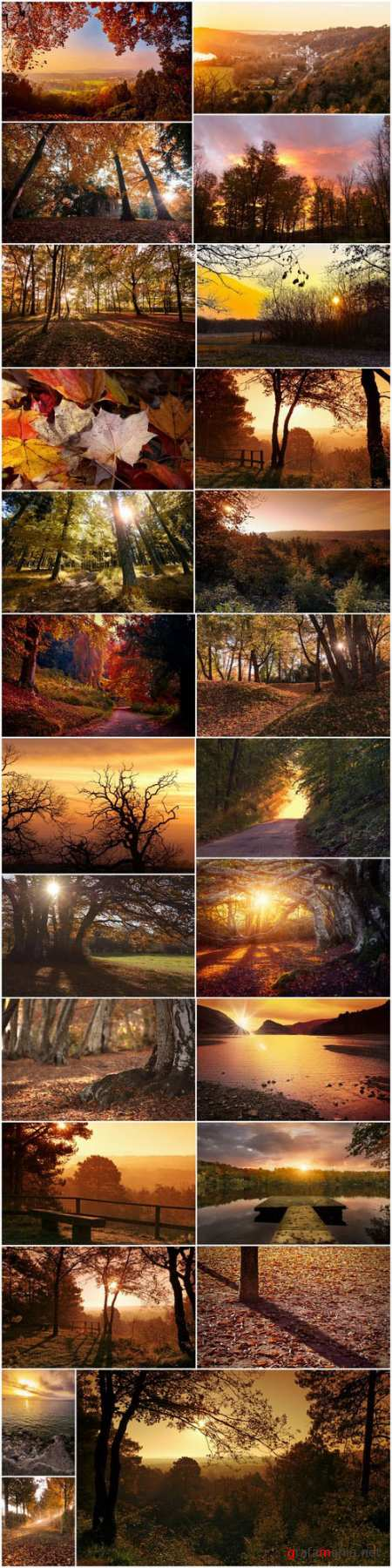 Beautiful autumn forest and landscape 2 - 25xUHQ JPEG Photo Stock
