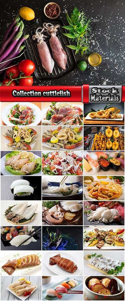 Collection cuttlefish tentacles delikotes sushi seafood dishes 25 HQ Jpeg