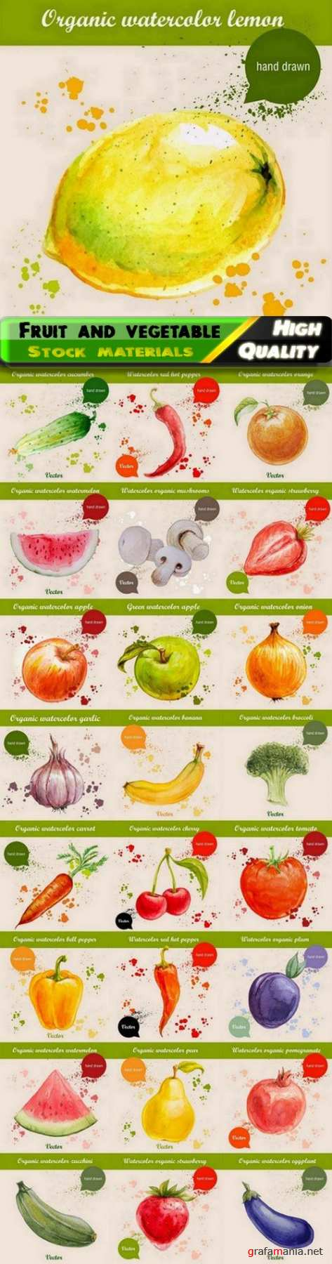 Creative art illustrations of watercolor fruit and vegetable 25 Eps