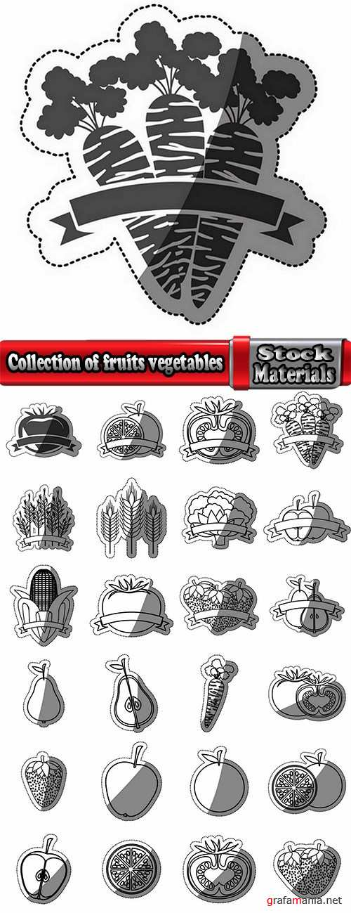 Collection of fruits vegetables to cut sticker label 25 EPS