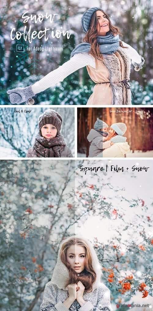 Snow Presets & Brushes - 1150590