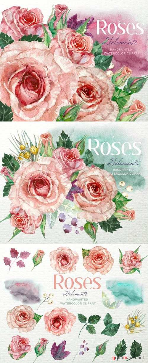 Shabby Roses Watercolor Clipart F-39 964259