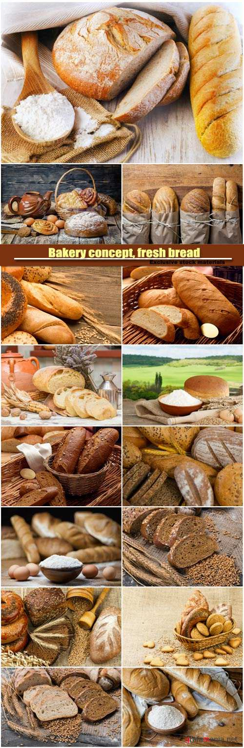 Bakery concept, fresh bread, sliced rye bread