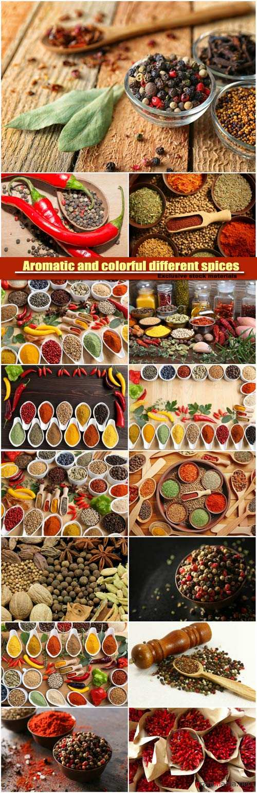 Aromatic and colorful different spices