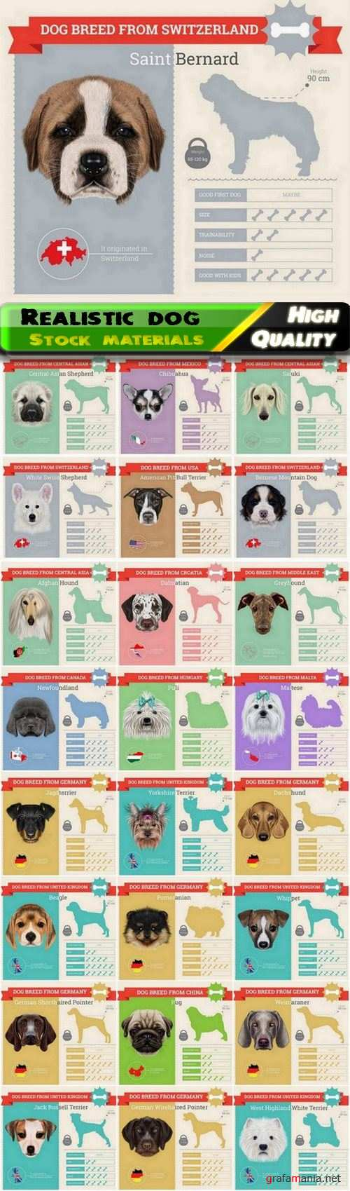 Realistic vector dog and pet illustration of different breeds 25 Eps