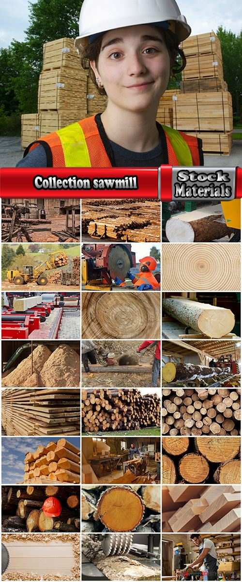 Collection sawmill production of wood a tree felling timber 2-25 HQ Jpeg