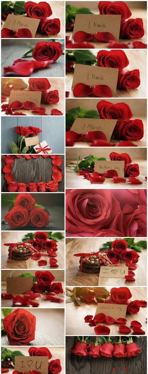Red roses and petals on old wood table with 8 march paper card 18X JPEG