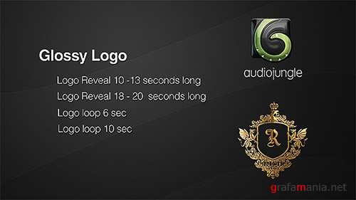 Glossy Logo   Reflection Logo Loop - Project for After Effects (Videohive)