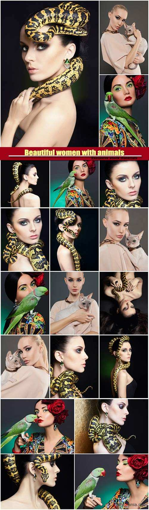 Beautiful women with animals, girl with snake girl with a parrot, girl with cat