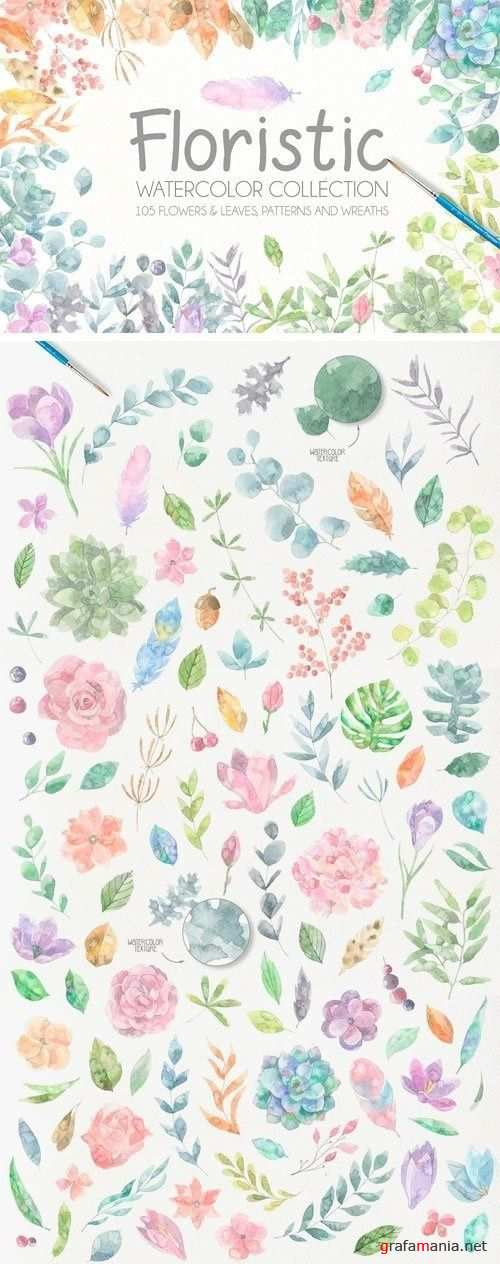 Floristic Watercolor Collection - 1211284