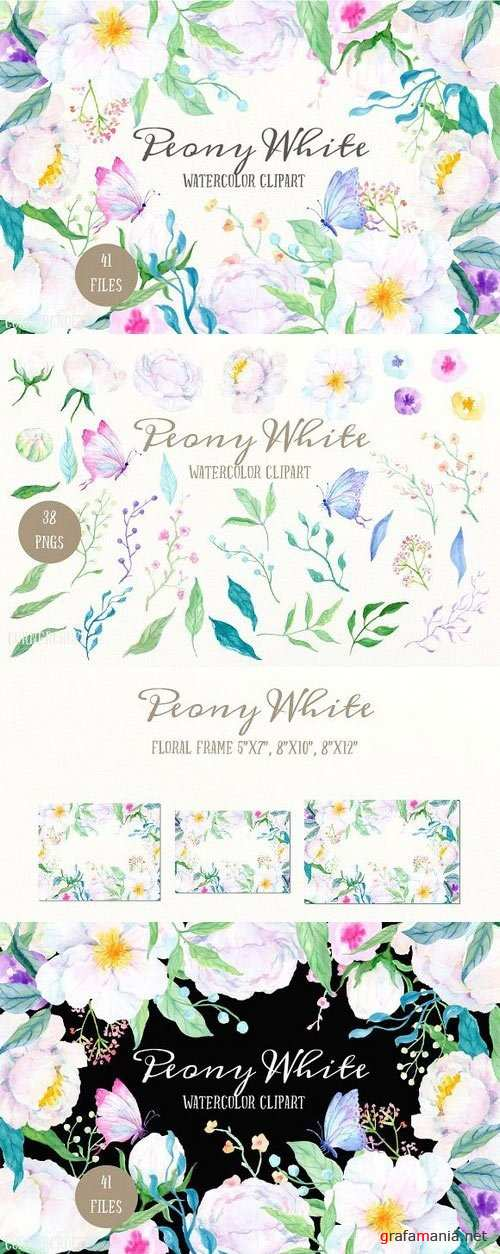 Watercolor Clipart Peony White 1173639