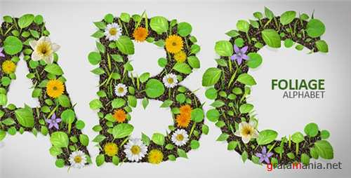 Foliage Alphabet - After Effects Project (Videohive)