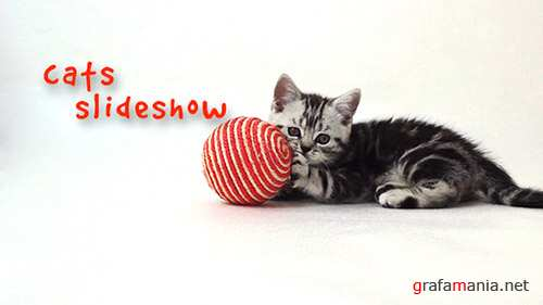 Cats Slideshow - Project for After Effects (Videohive)