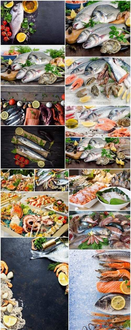 Raw seafood Healthy diet eating 15X JPEG