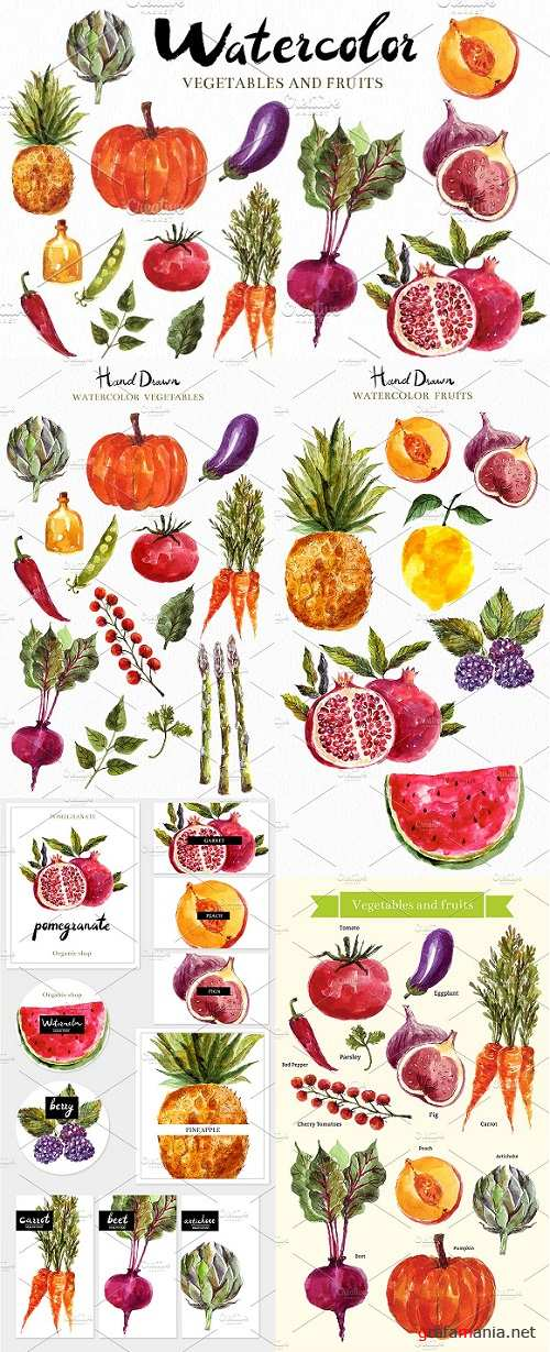 Watercolor vegetables & fruits - 678986