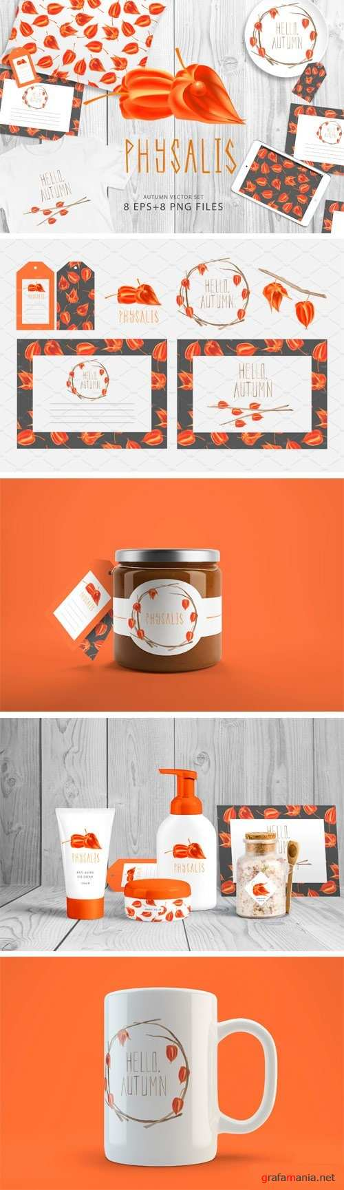 Hello Autumn Physalis Vector Set - 1382285