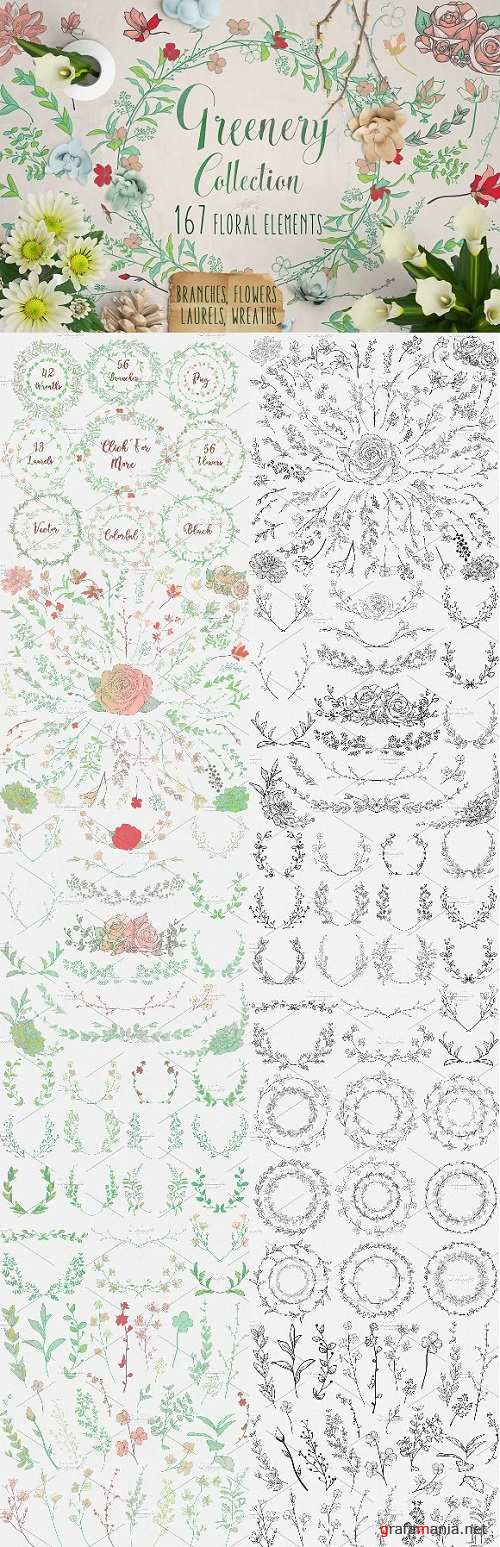 Greenery Collection 167 Elements 1466449