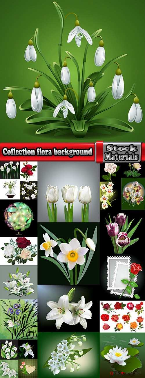 Collection floralny background is plant flower prints on wallpaper pattern fabric 2-25 EPS