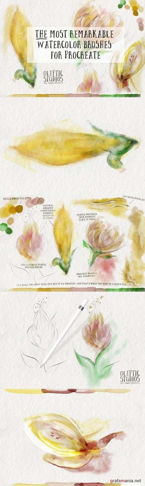Best Watercolor Brushes — Procreate 1393456