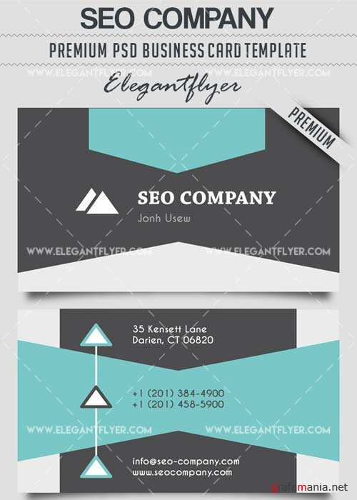 Seo Company V2 Business Card Templates PSD