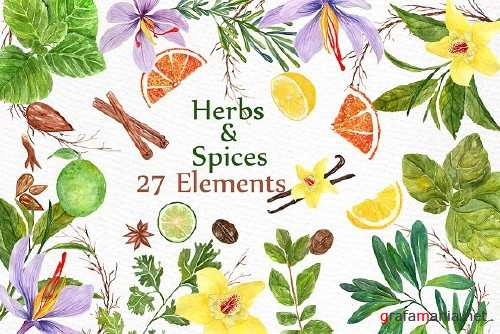watercolor Herbs and spices clipart 1397650