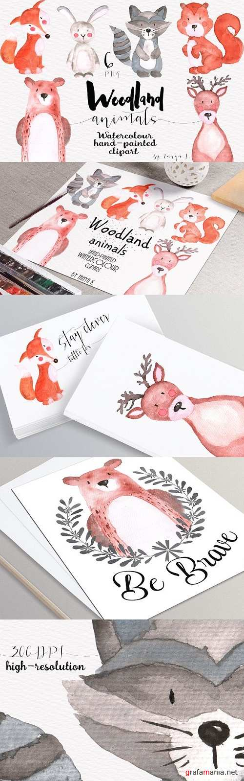 Woodland animals Watercolor Clipart - 479584