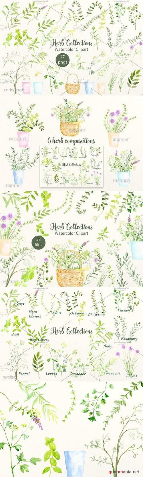 Watercolor Herb Collection 855425