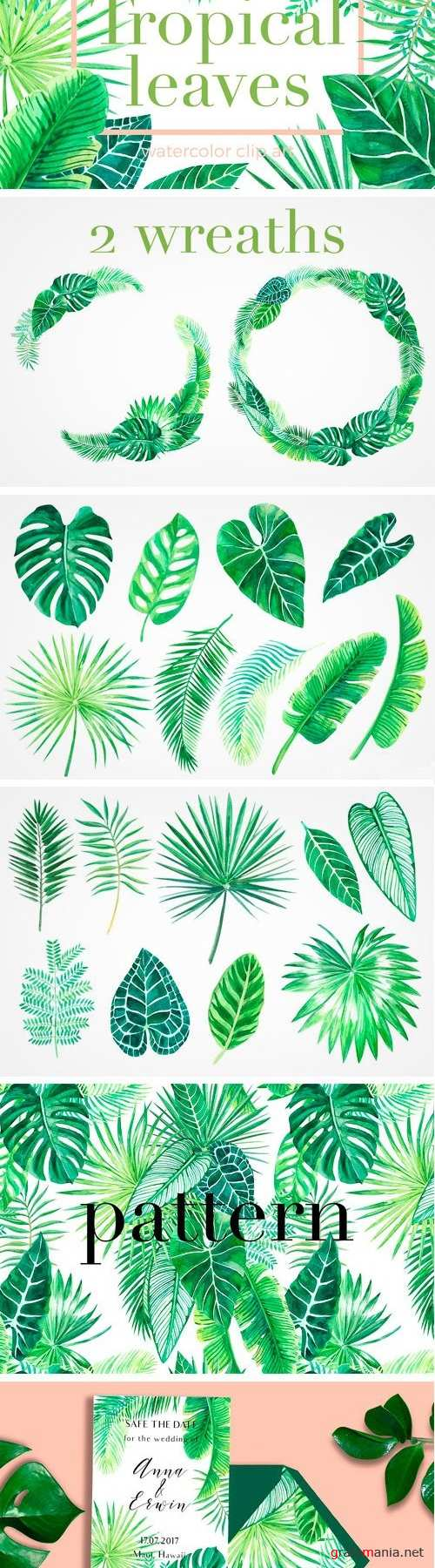 Tropical Leaves. Watercolor Clip Art - 1408419