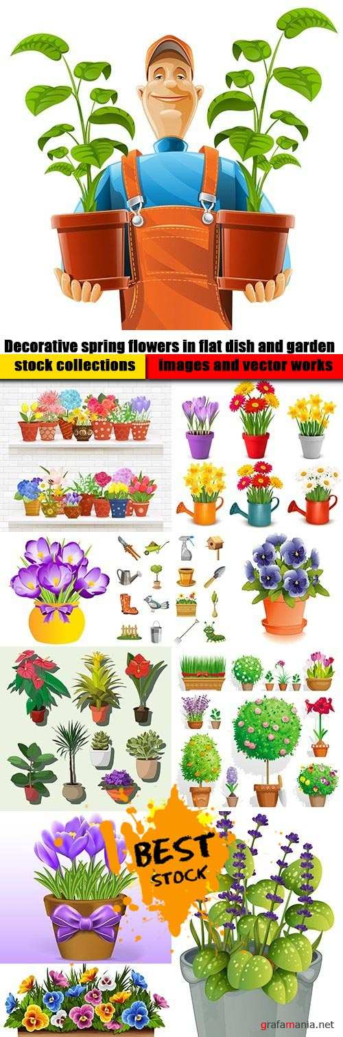 Decorative spring flowers in flat dish and garden