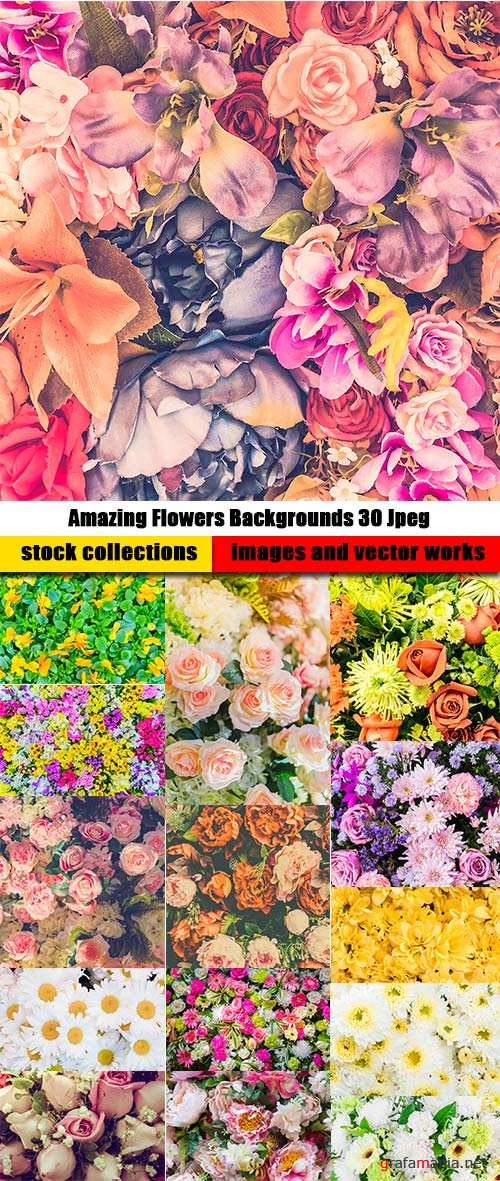Amazing Flowers Backgrounds 30 Jpeg