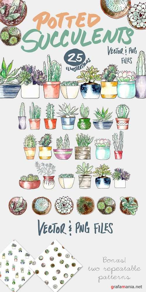 Potted Succulents Illustration Pack - 718043