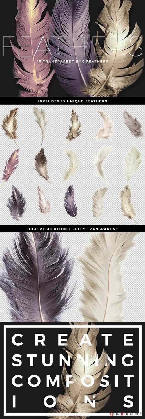 Transparent PNG Feathers Pack 1505546