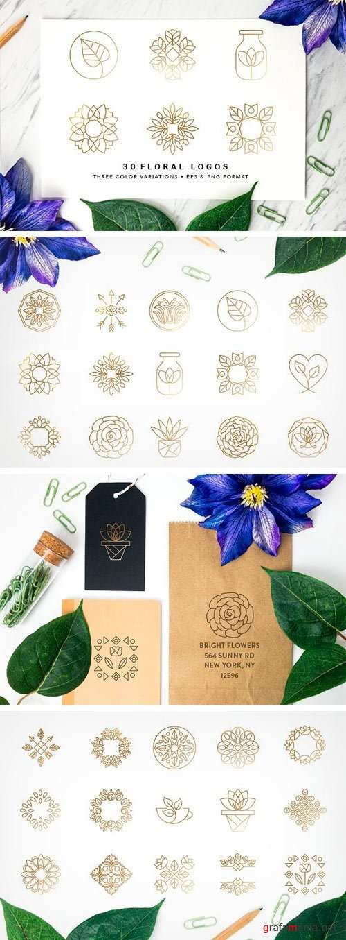 Floral Logo Collection EPS & PNG - 1500057