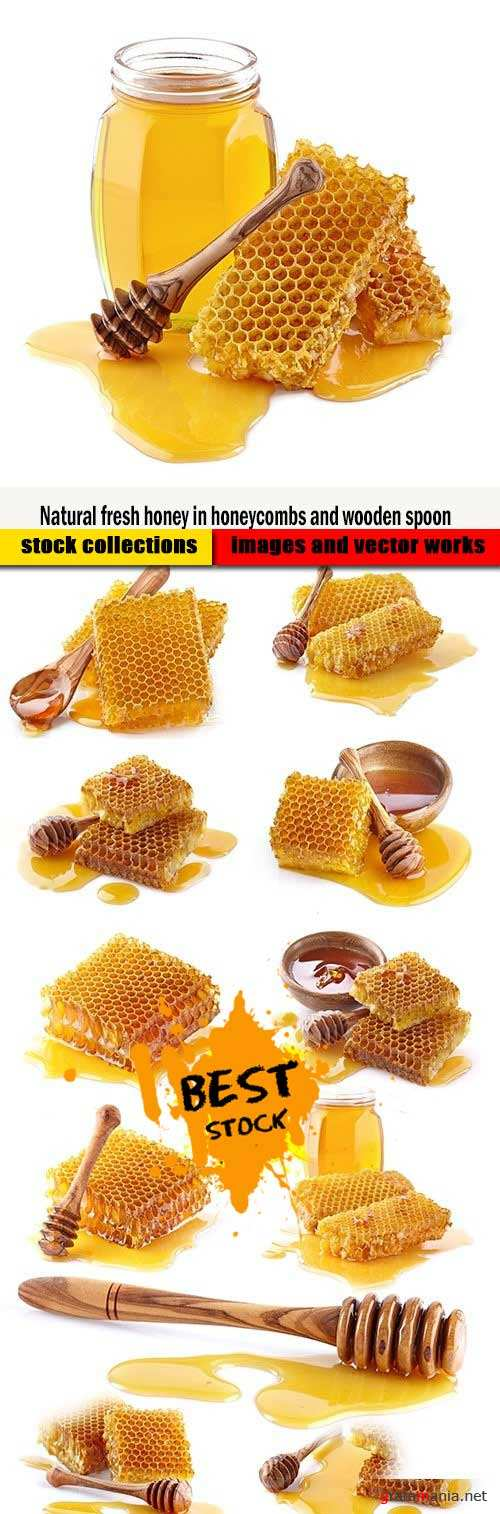 Natural fresh honey in honeycombs and wooden spoon