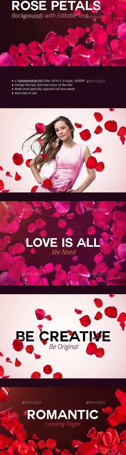 4 Rose Petals Backgrounds with Editable Text 20258778