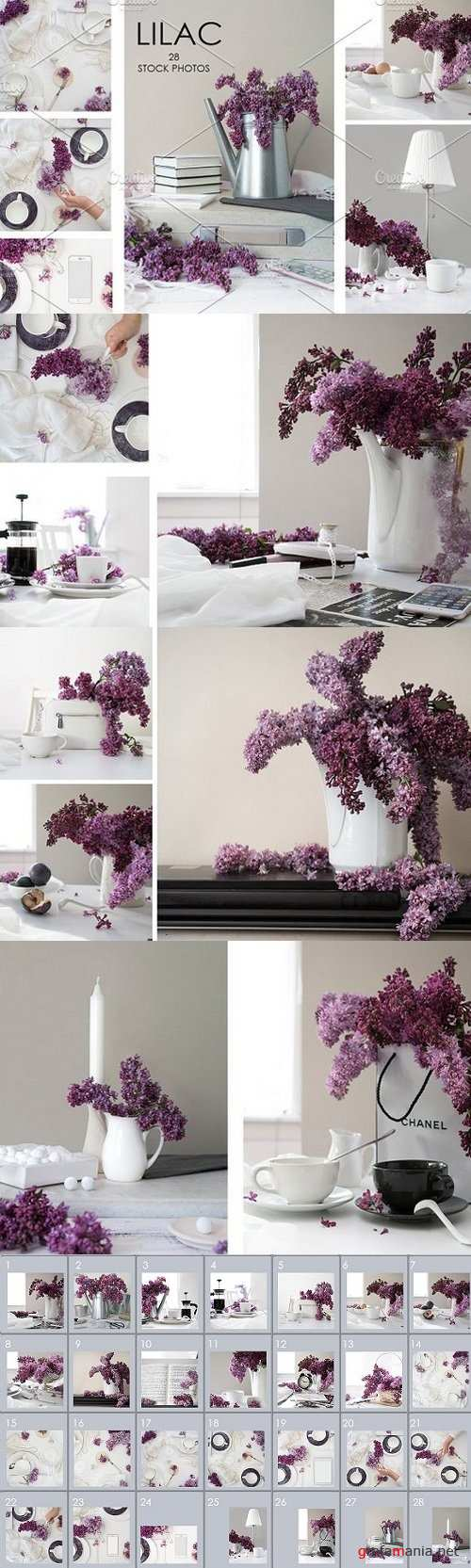 FLOWERS OF LILAC. 28 STOCK PHOTOS. 1636373