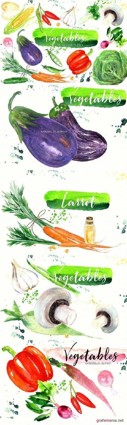 Vegetables Watercolor clipart 1739181
