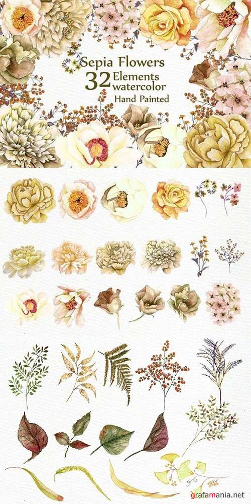 Watercolor Sepia flowers Clipart 1632764