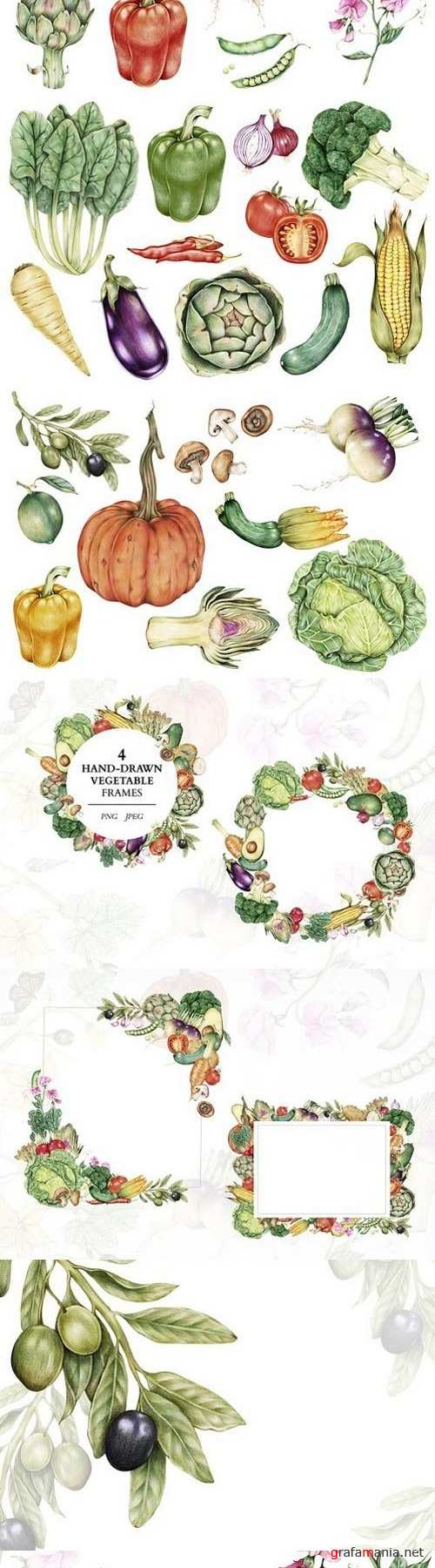 29 Incredible hand-drawn vegetables 1734414