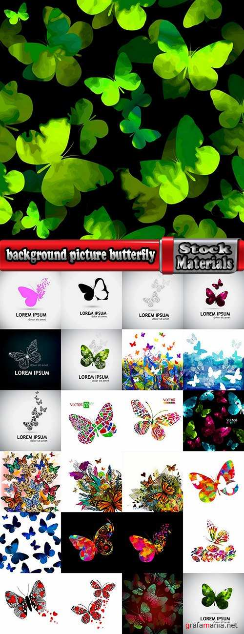 background picture butterfly wings insect wallpaper 25 EPS