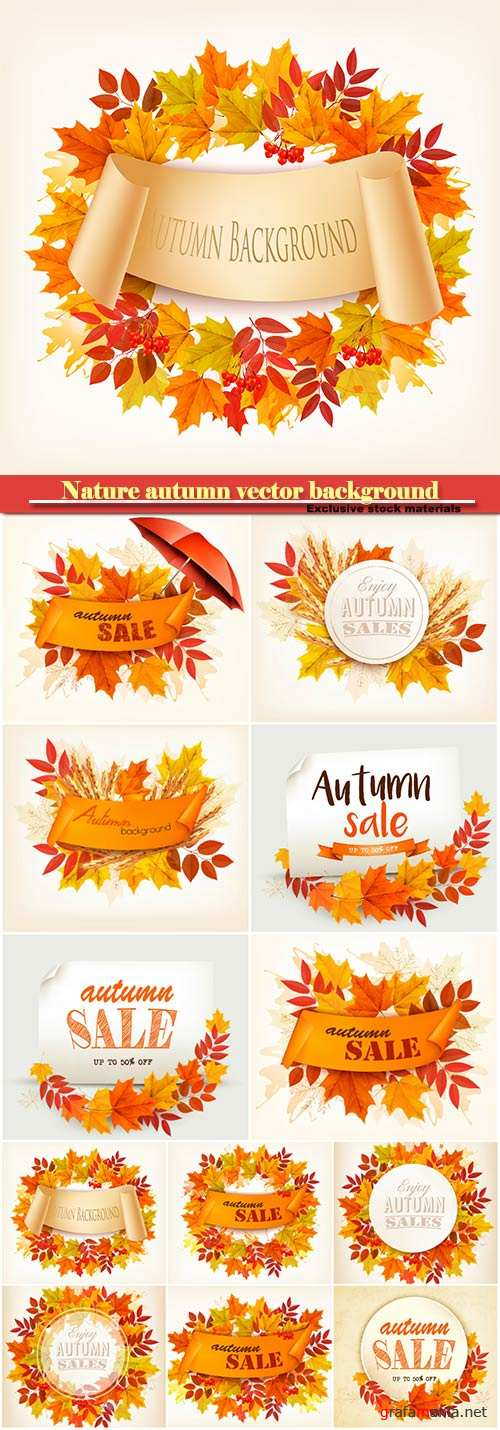 Nature autumn vector background with colorful leaves