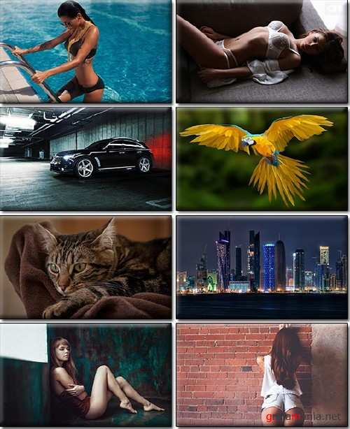 LIFEstyle News MiXture Images. Wallpapers Part (1286)