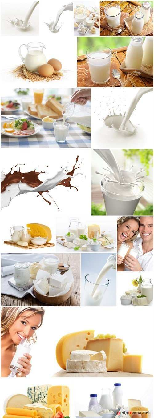 Milk Dairy Products - 20 HQ Images