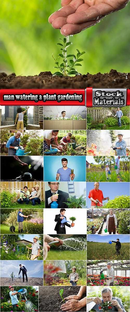 man watering a plant gardening sprout a germ 25 HQ Jpeg