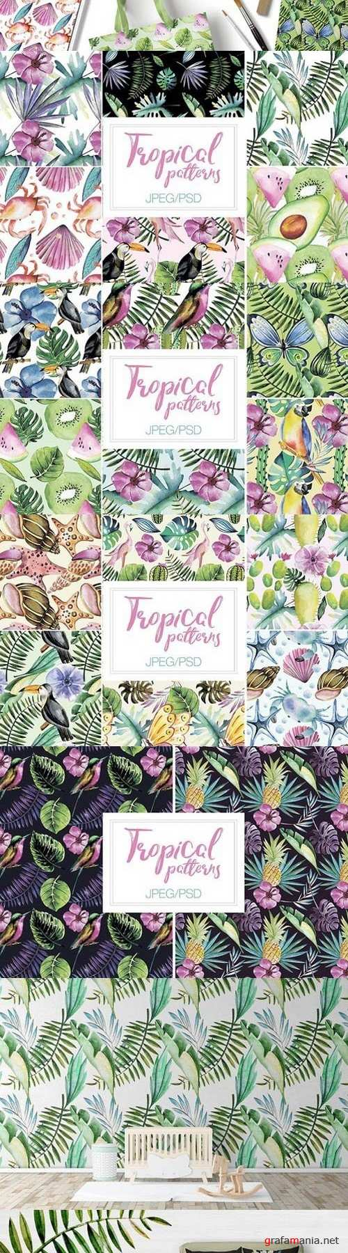 Watercolor Tropical Patterns 1808366