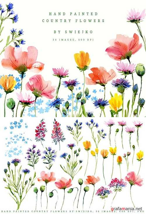 Hand painted country flowers 1861526