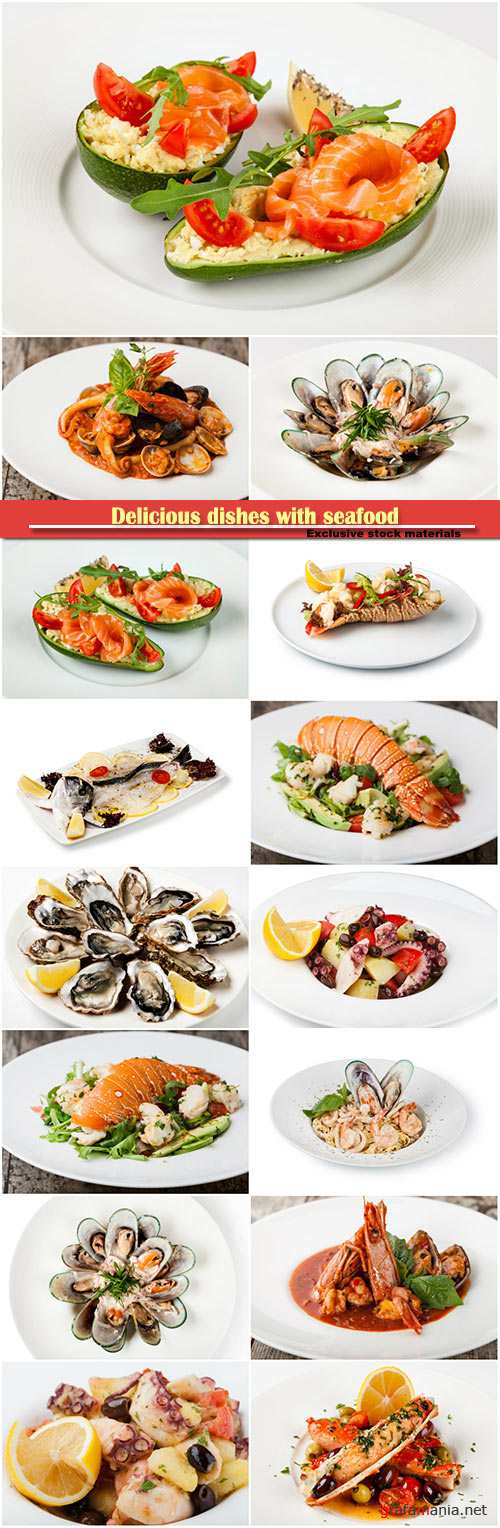 Delicious dishes with seafood, lobster, mussels, octopus, salmon