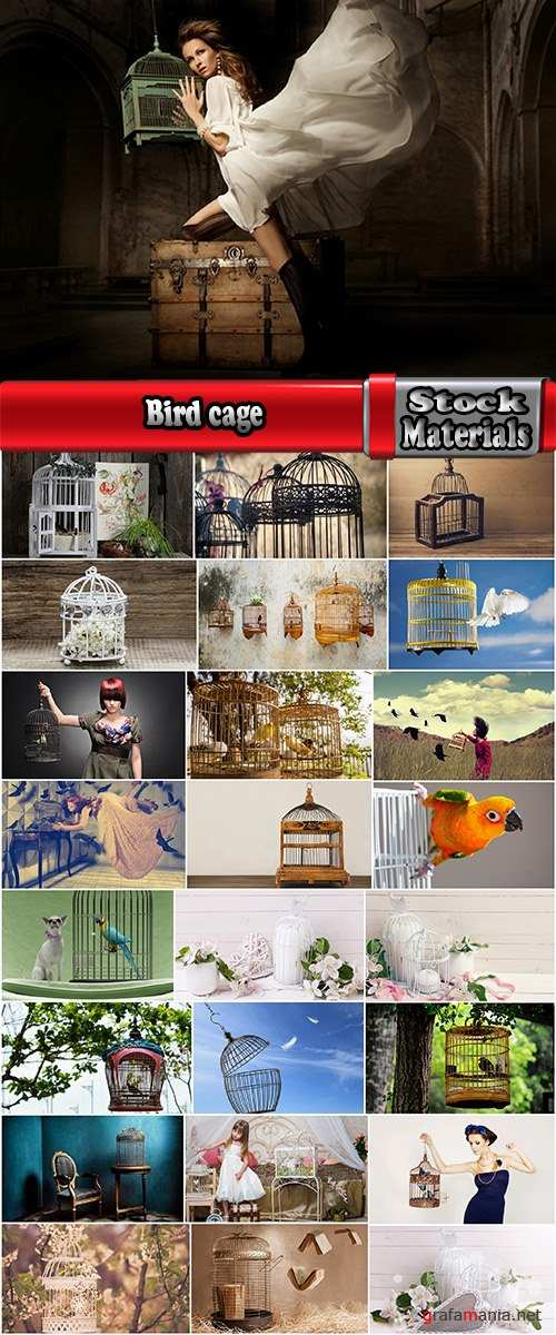 Bird cage grille girl woman 25 HQ Jpeg