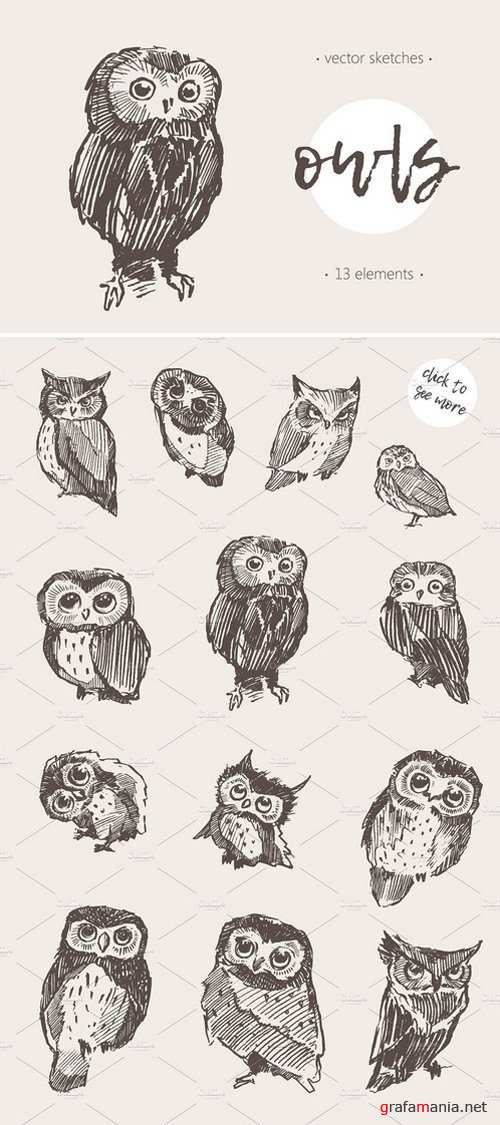 Sketches of owls 1869936